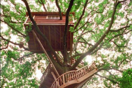 Cabane enfant dans les arbres cabane dans les arbres des chimpanzs enfants dans la cabane - Cabane dans les arbres pour enfants ...